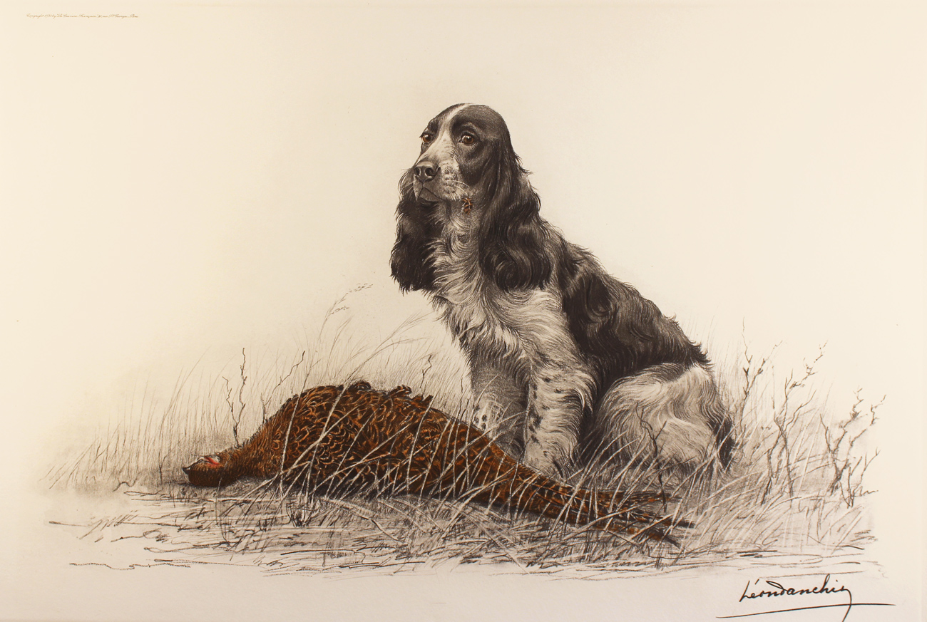 Engraving, Hand coloured restrike engraving, Cocker Spaniel and Pheasant Hen, click to enlarge