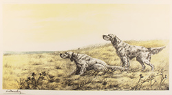 Engraving, Hand coloured restrike engraving, English Setters in Field