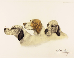 Engraving, Hand coloured restrike engraving, Three Setters Large image. Click to enlarge