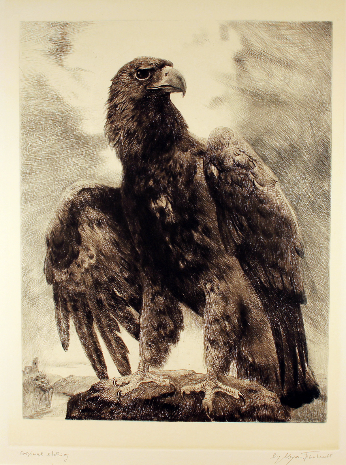 Engraving, Engraving, Eagle, click to enlarge