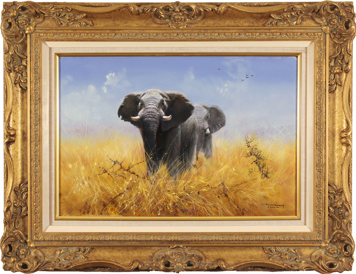 Pip McGarry, Original oil painting on canvas, Elephants, click to enlarge