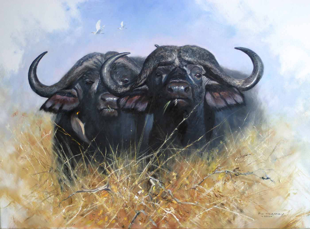 Pip McGarry, Original oil painting on canvas, Buffalo Brothers. Click to enlarge