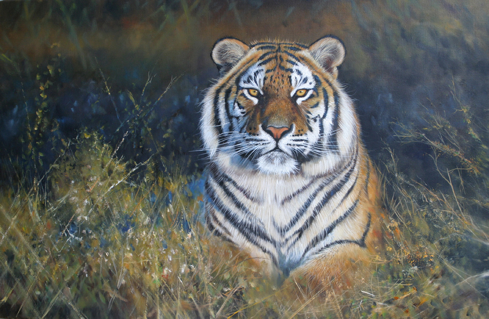 Pip McGarry, Original oil painting on canvas, Reclining Tiger, click to enlarge