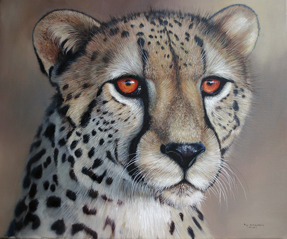 Pip McGarry, Original oil painting on canvas, Cheetah Portrait, click to enlarge