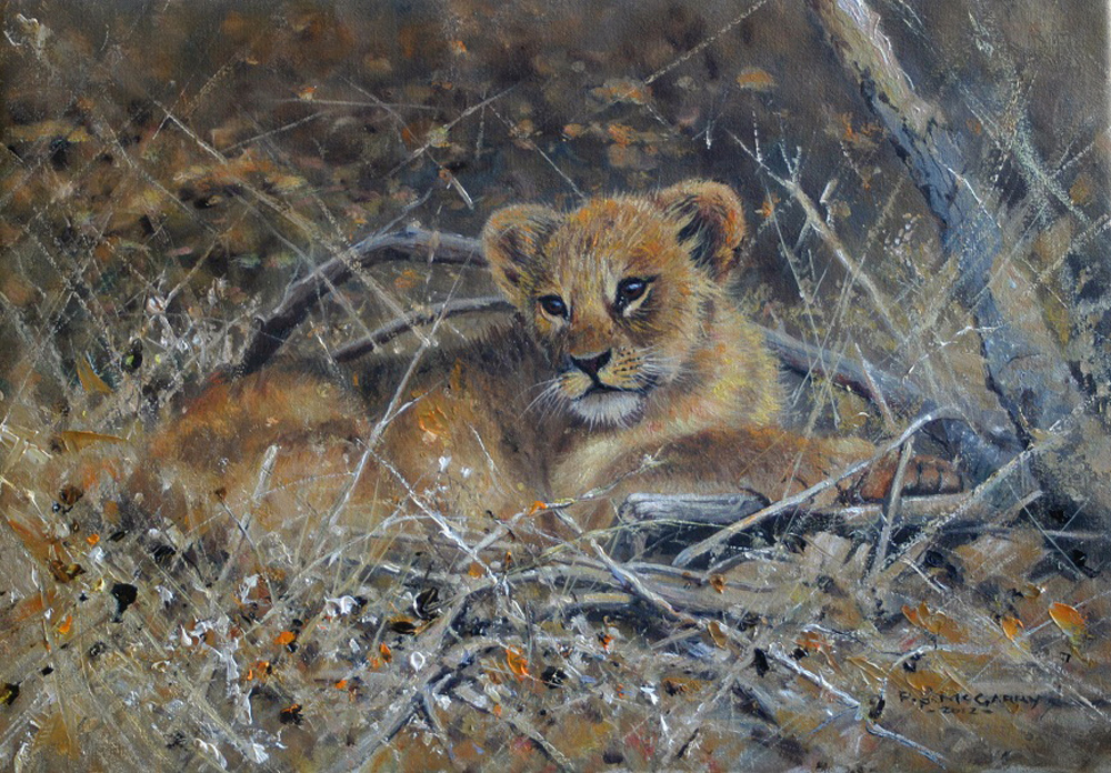 Pip McGarry, Original oil painting on canvas, Lion Cub, click to enlarge