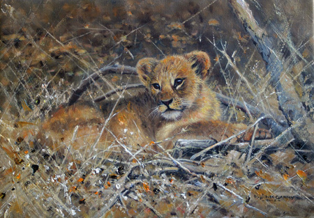Pip McGarry, Original oil painting on canvas, Lion Cub Without frame image. Click to enlarge