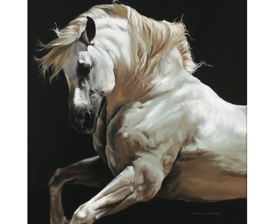 Natalie Stutely, Andalusian Stallion, Original oil painting on panel