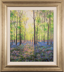 Alan Barker, , The Bluebell Wood