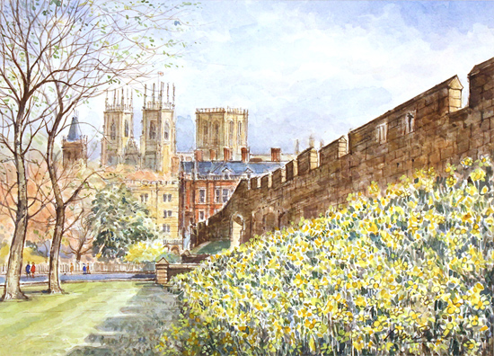 Alan Stuttle, Watercolour, City Walls, York Without frame image. Click to enlarge
