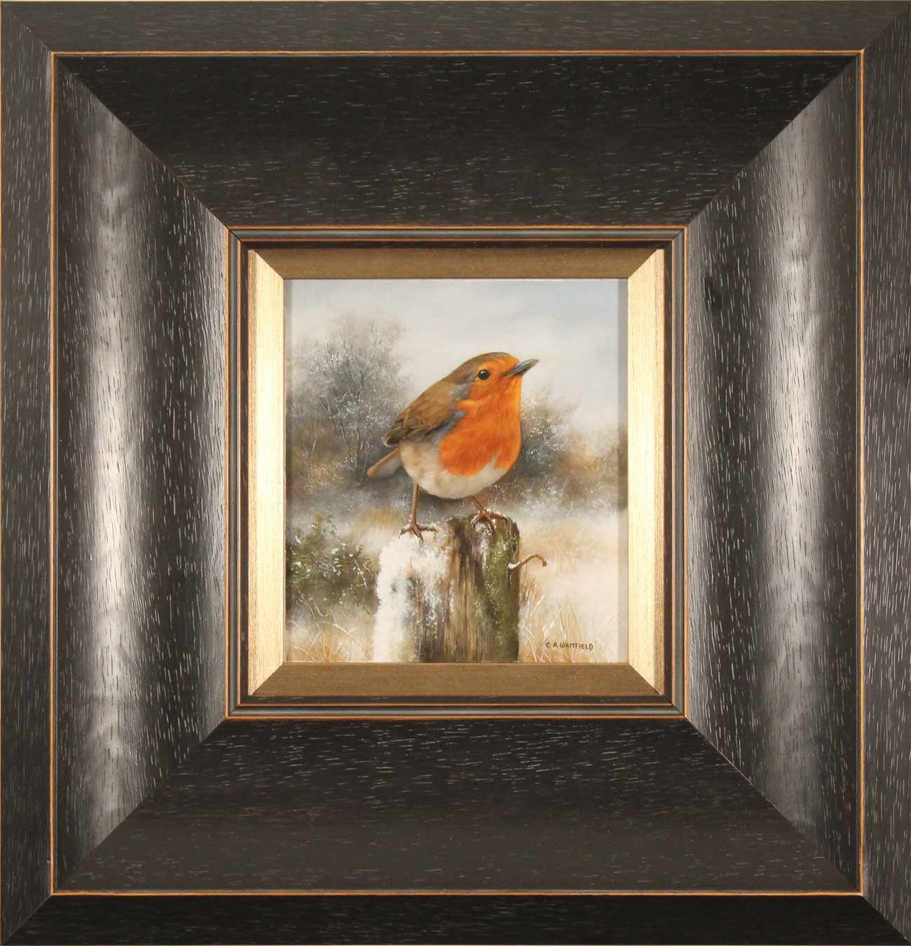 Carl Whitfield, Original oil painting on panel, Robin in Winter, click to enlarge