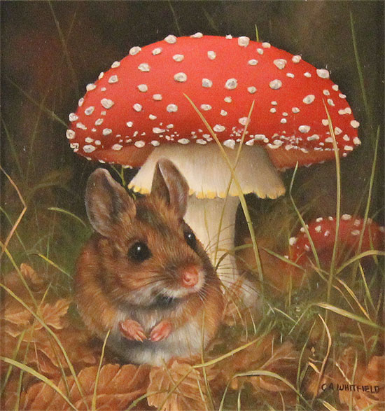 Carl Whitfield, Original oil painting on panel, Mouse and Toadstool  No frame image. Click to enlarge