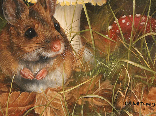 Carl Whitfield, Original oil painting on panel, Mouse and Toadstool  Signature image. Click to enlarge