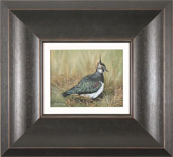 Carl Whitfield, Lapwing, Original oil painting on panel