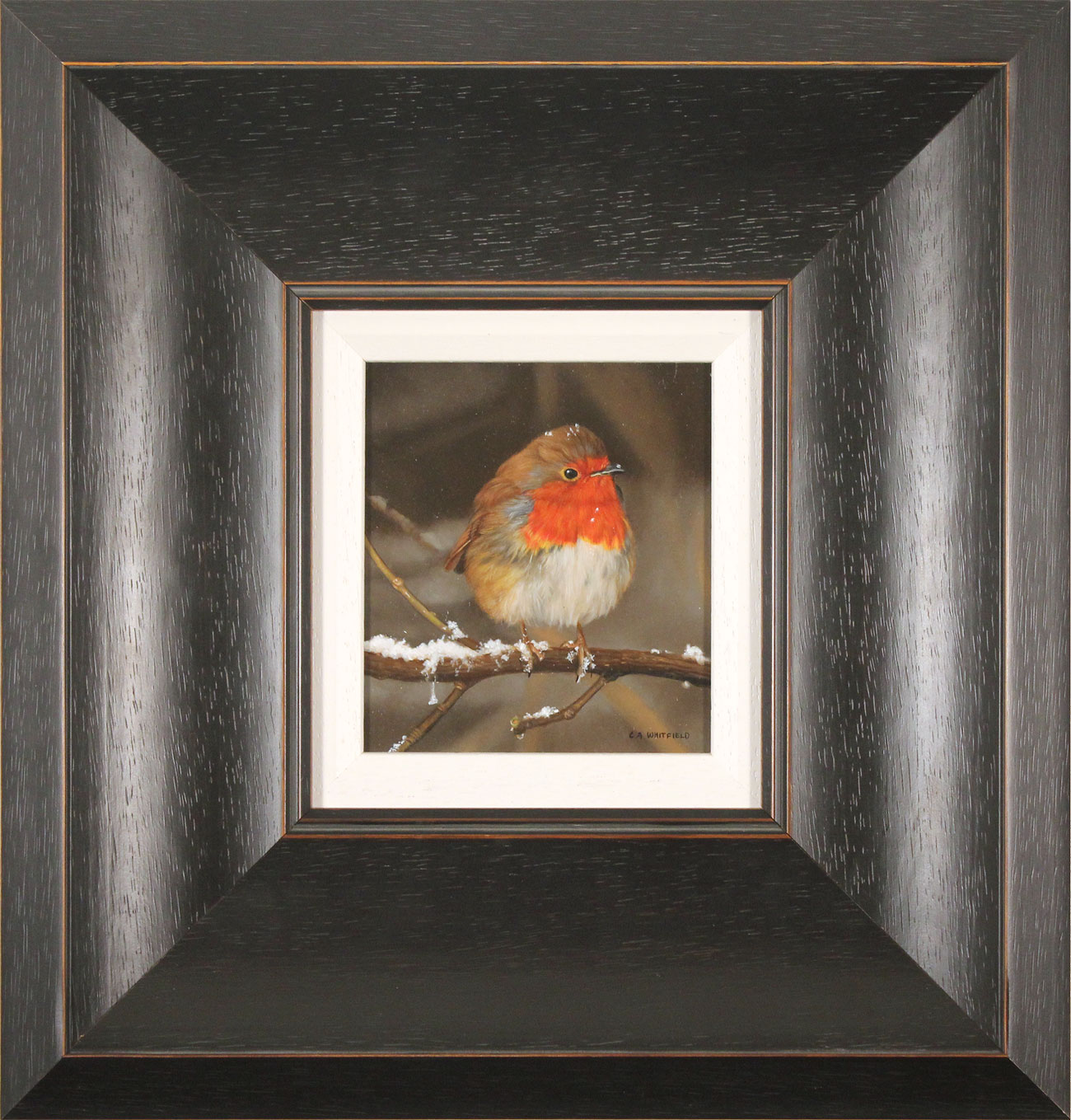 Carl Whitfield, Original oil painting on panel, Winter Robin, click to enlarge