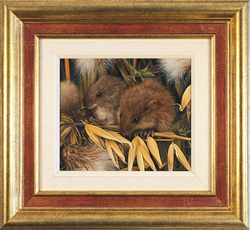 Carl Whitfield, Original oil painting on panel, Harvest Mice