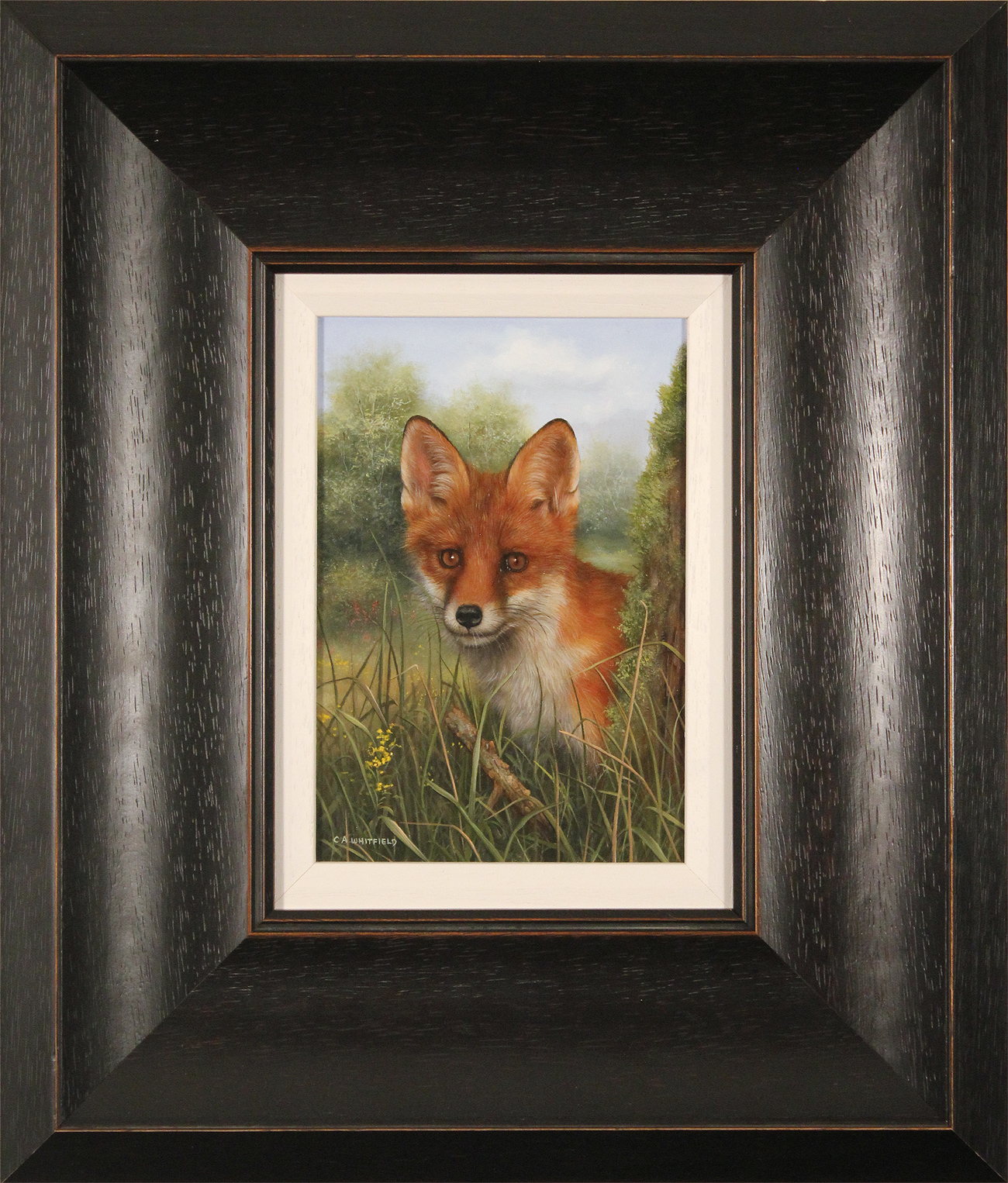 Carl Whitfield, Original oil painting on panel, Fox Cub, click to enlarge