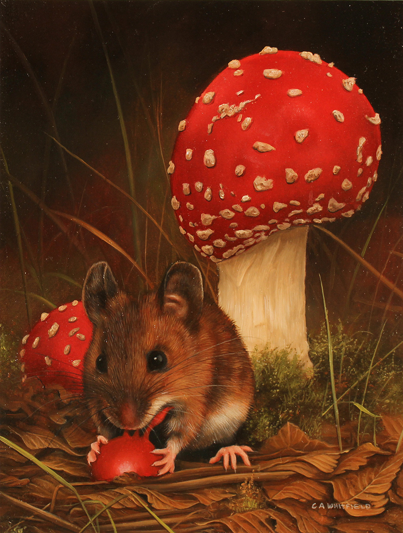 Carl Whitfield Mushroom Mouse Enlarge Page Art Size