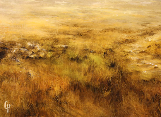 Clare Haley, Original oil painting on panel, Golden Light Signature image. Click to enlarge