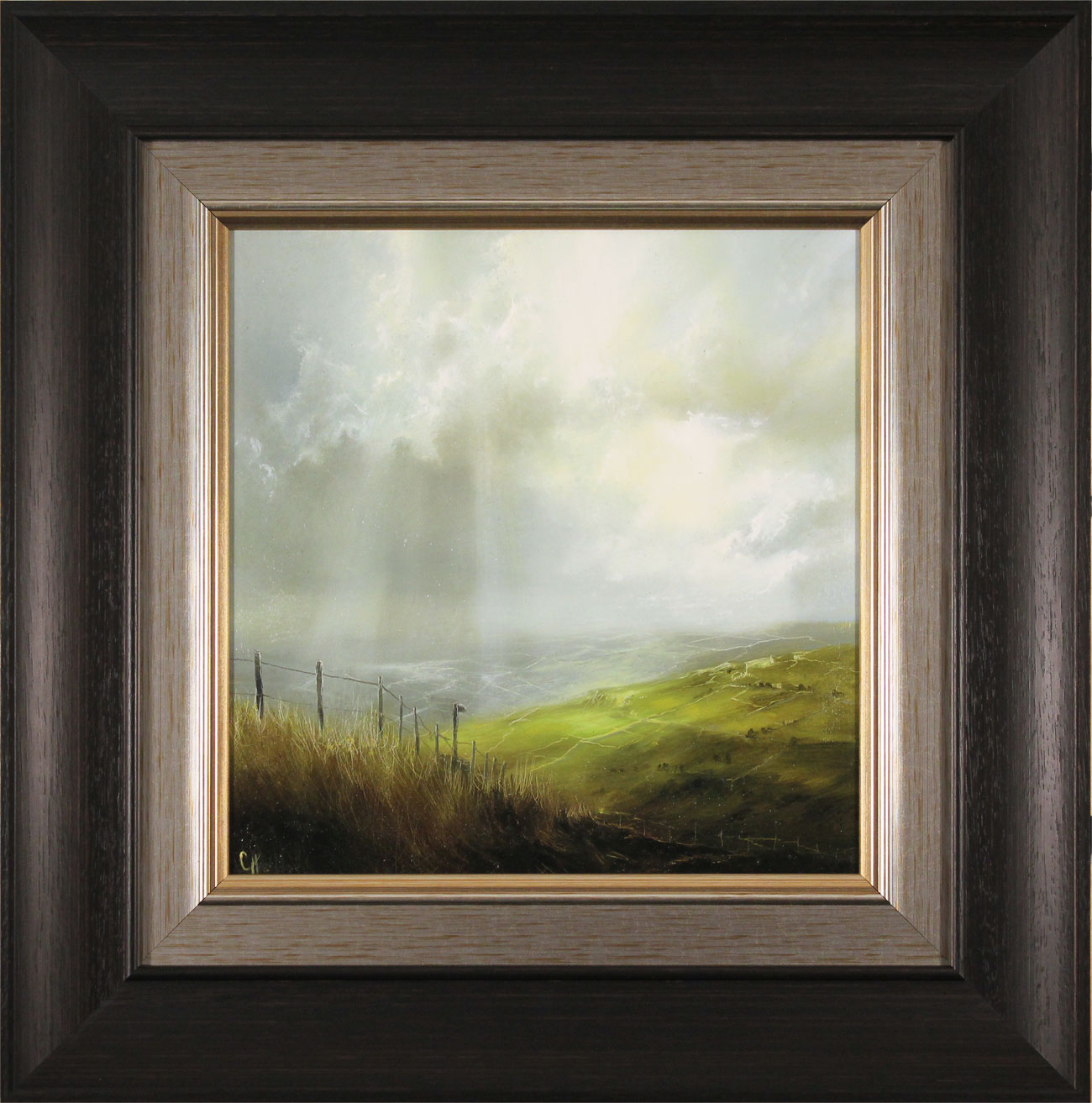 Clare Haley, Original oil painting on panel, Capture the Moment. Click to enlarge