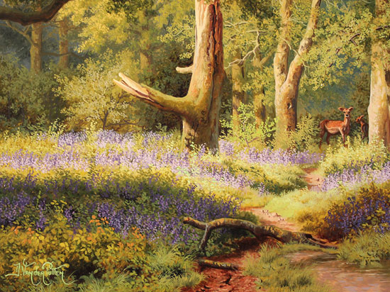 Daniel Van Der Putten, Original oil painting on panel, May in Beverley Woods, Yorkshire Signature image. Click to enlarge