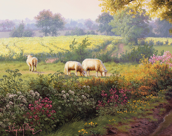 Daniel Van Der Putten, Original oil painting on panel, Road to Longborough in May, The Cotswolds Signature image. Click to enlarge