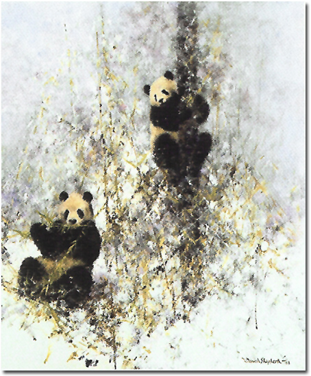David Shepherd, Signed Limited Edition Print, Winter in Wolong, click to enlarge