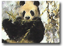 David Shepherd, Signed Limited Edition Print, Winter in Wolong