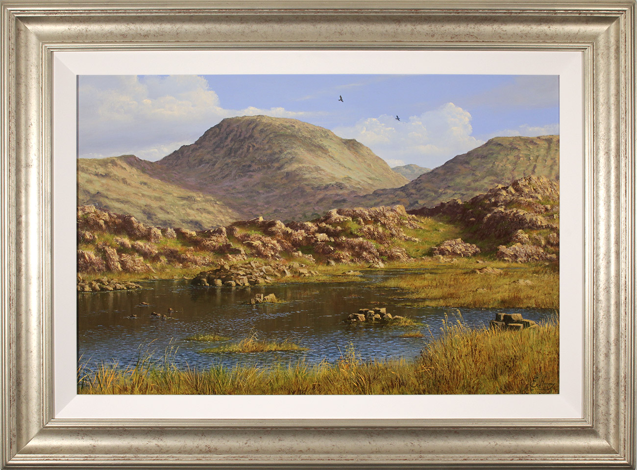 Edward Hersey, Original oil painting on panel, Summer's Glory, Innominate Tarn , click to enlarge