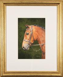 Jacqueline Gaylard, SOFA, Original acrylic painting on board, Patience Large image. Click to enlarge