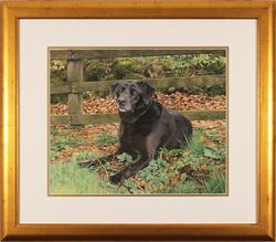 Jacqueline Gaylard, SOFA, Original acrylic painting on board, Autumn Days Large image. Click to enlarge