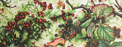 Jerry Walton, Watercolour, Brambles and Hawthorn Berries