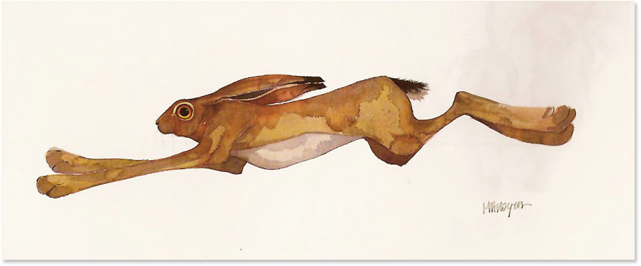 Mary Ann Rogers, Signed limited edition print, Bound, click to enlarge