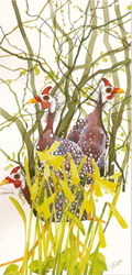 Mary Ann Rogers, Signed limited edition print, Guinea Fowls and Daffodils Large image. Click to enlarge