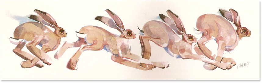 Mary Ann Rogers, Signed limited edition print, March Hares, click to enlarge