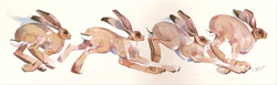 Mary Ann Rogers, Signed limited edition print, March Hares