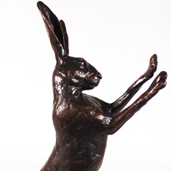 Michael Simpson, Bronze, Medium Hare Boxing