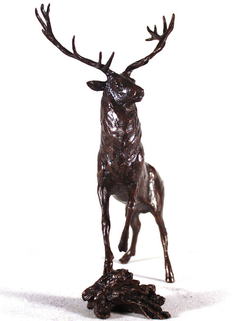 Michael Simpson, Bronze, Highland Stag Signature image. Click to enlarge