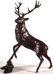 Michael Simpson, Bronze, Highland Stag Large image. Click to enlarge