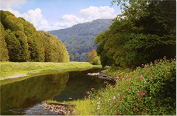 Michael James Smith, Signed limited edition print, River Wye, Wales