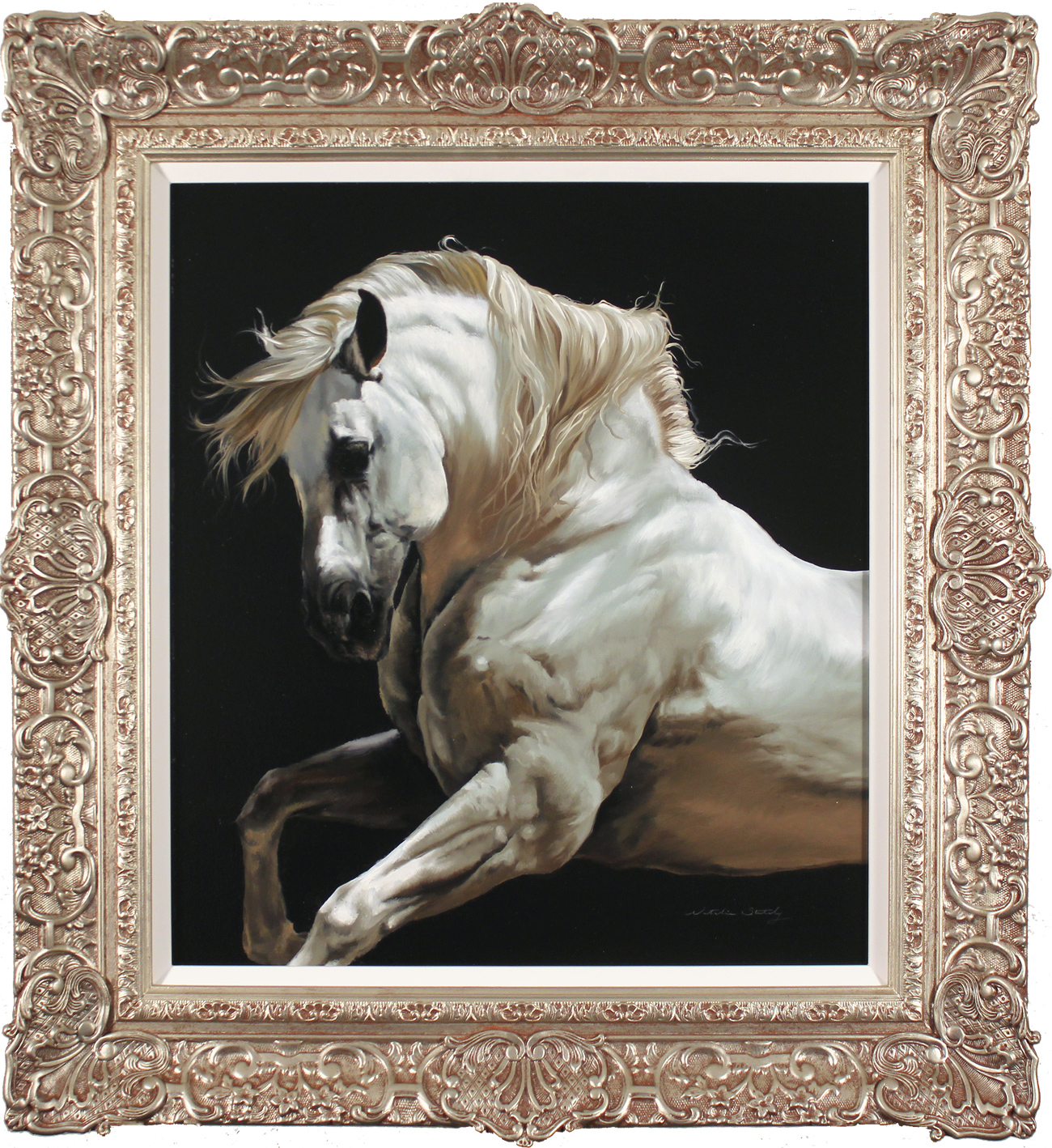 Natalie Stutely, Original oil painting on panel, Andalusian Stallion, click to enlarge