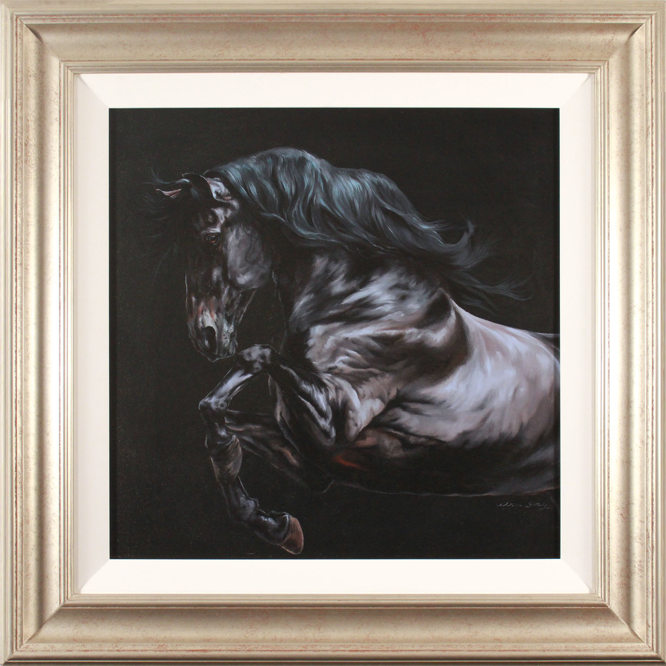 Natalie Stutely, Original oil painting on panel, Andalusian Stallion. Click to enlarge