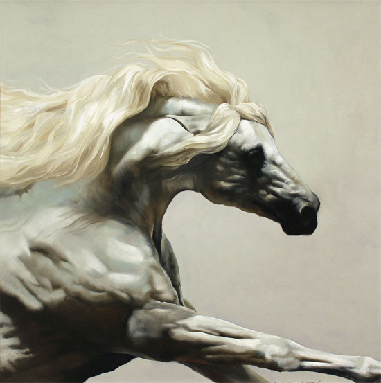 Natalie Stutely, Original oil painting on panel, Andalusian Stallion Without frame image. Click to enlarge