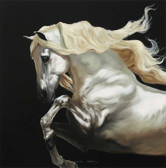 Natalie Stutely, Original oil painting on panel, Andalusian Stallion No frame image. Click to enlarge