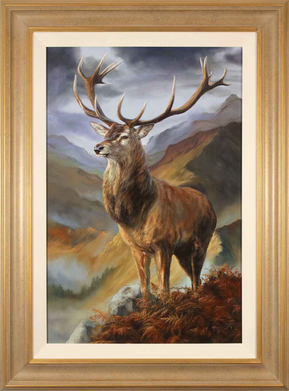 Natalie Stutely, Original oil painting on panel, Highland Monarch, click to enlarge