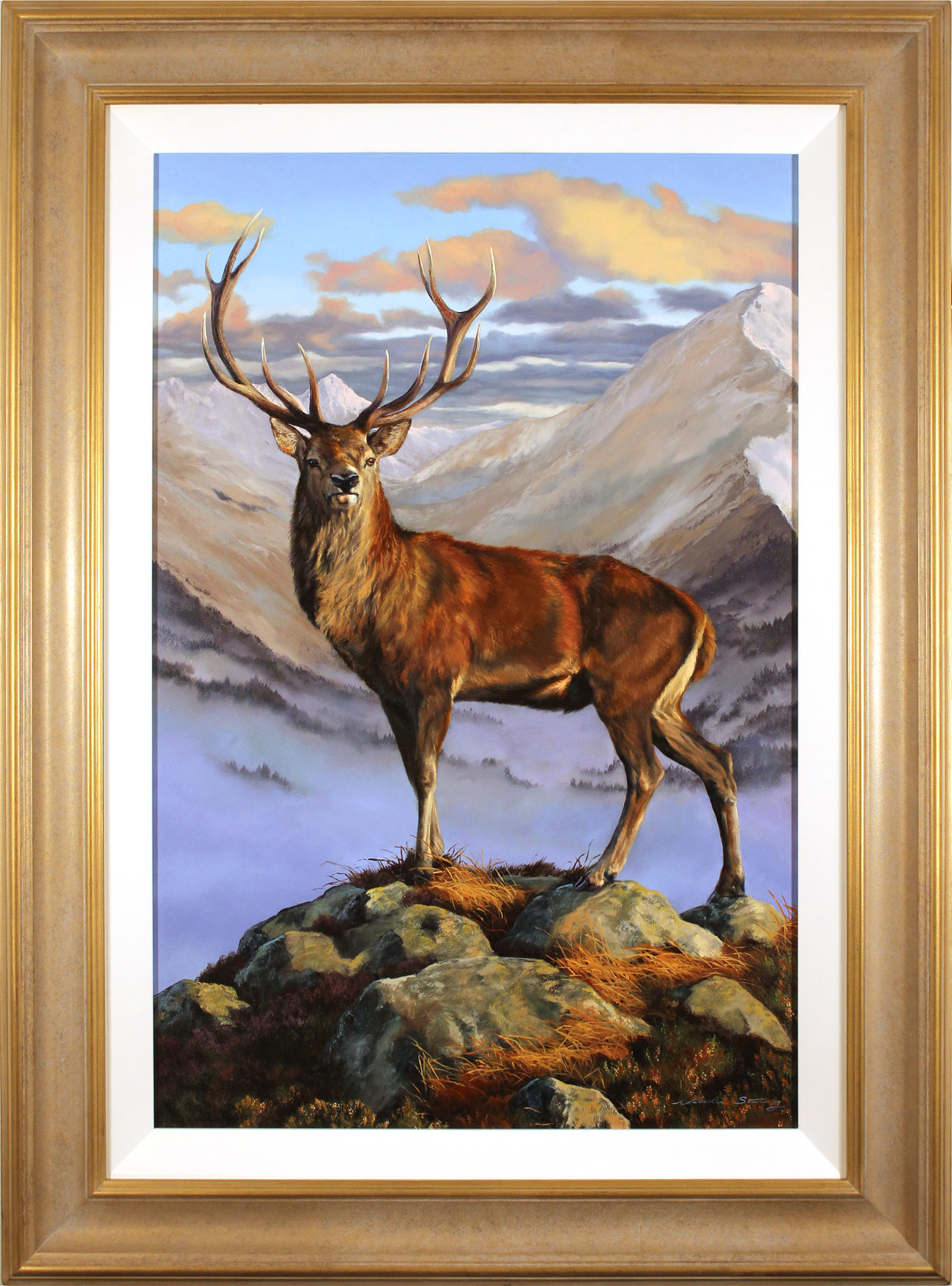 Natalie Stutely, Original oil painting on panel, Red Stag with Beinn Eighe, Torridon, click to enlarge