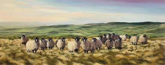 Natalie Stutely, Original oil painting on panel, Swaledale Flock in the Cleveland Way No frame image. Click to enlarge