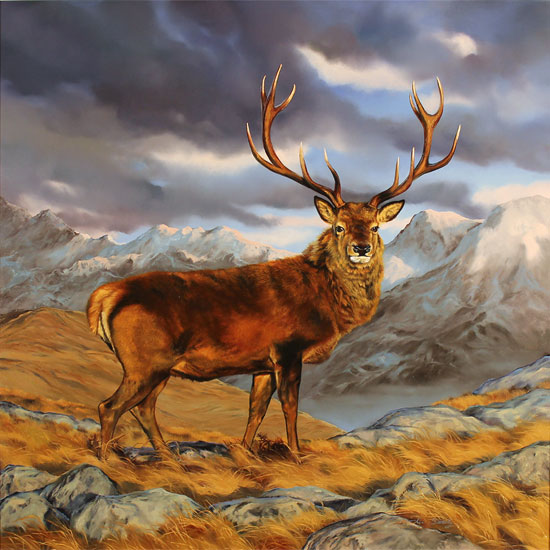 Natalie Stutely, Original oil painting on panel, Glen Etive, Rannoch Moor Without frame image. Click to enlarge