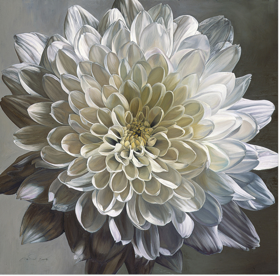 Neill Jenkins, Original oil painting on canvas, 'White Chrysanthemum', click to enlarge
