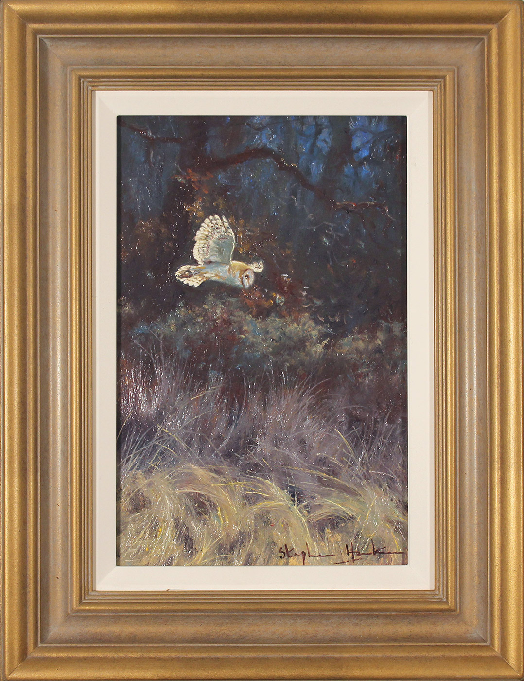 Stephen Hawkins, Original oil painting on panel, Barn Owl in Flight, click to enlarge