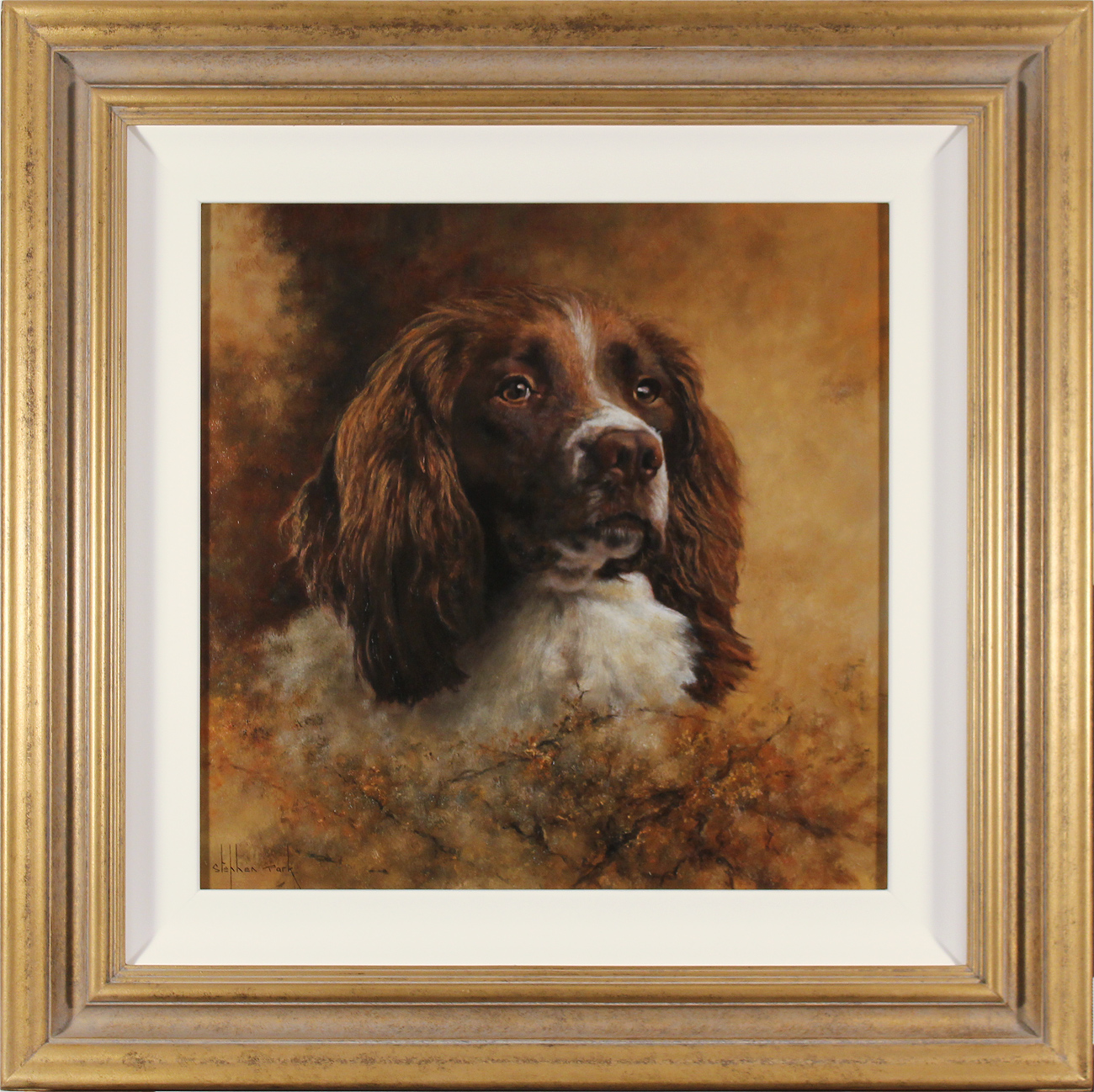 Stephen Park, Original oil painting on panel, Springer Spaniel, click to enlarge